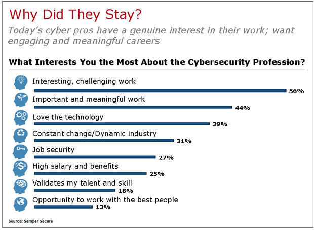 Painting A Picture Of Cybersecurity Pros Bankinfosecurity