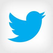 Twitter's IPO Filing: Assessing Risks